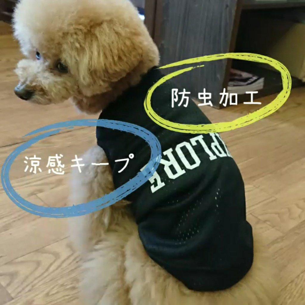 https://www.gurutto-aizu.com/db_img/cl_img/570/news/images/app_LVUFGq_202104191718.jpg
