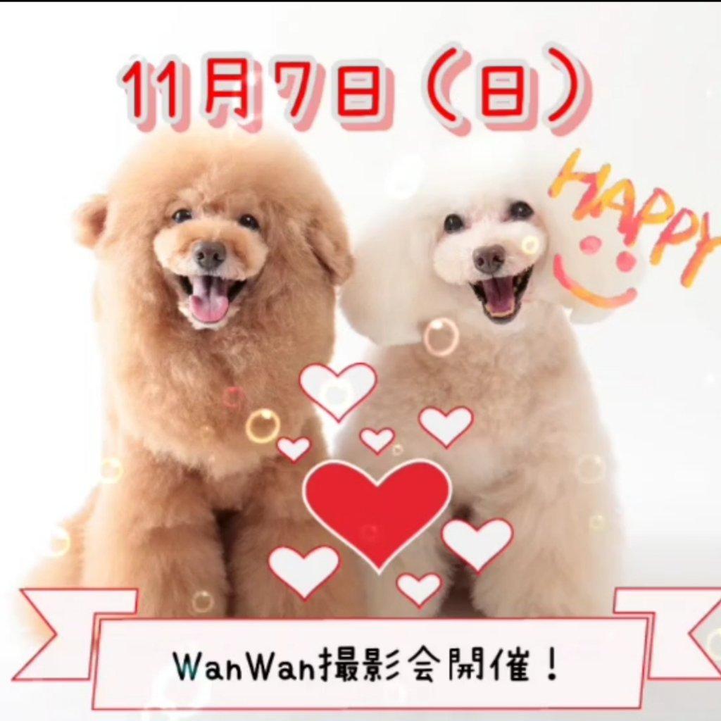 https://www.gurutto-aizu.com/db_img/cl_img/570/news/images/app_ukImbS_202109051441.jpg